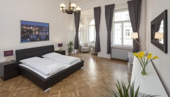 Modern and stylish apartmnet in Center of Prague
