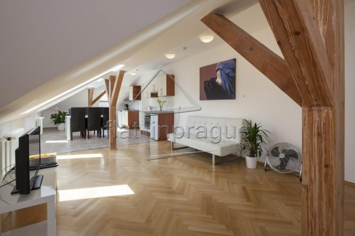 Beautiful attic apartment on Wenceslas square