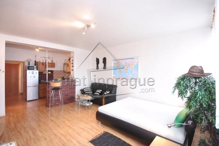 Modern one bedroom apartment for two people in Prague 7 - Holešovice