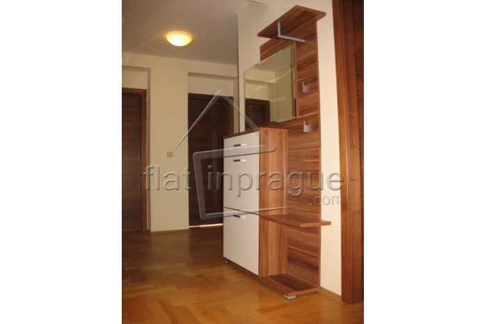 Air-conditioned apartment in Prague 2 - Vinohrady