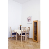 Nice furnished apartment situated in the center of Prague