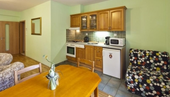 We are offering you a modern fully furnished one bedroom apartment  in the cente