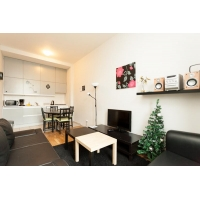 Modern two bedroom apartment on Wenceslas Square