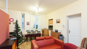 Three bedroom apartment in the city center, Prague 1 - New Town