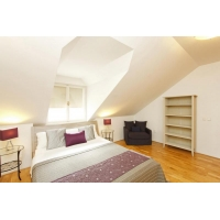 Beautiful 4 bedroom apartment with beautiful terrace in the heart of Prague.