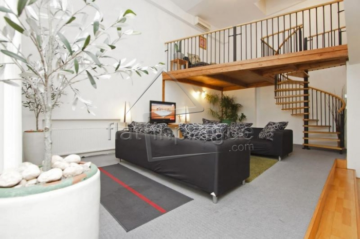 Air conditioned duplex apartment for up to 12 people in Prague 1