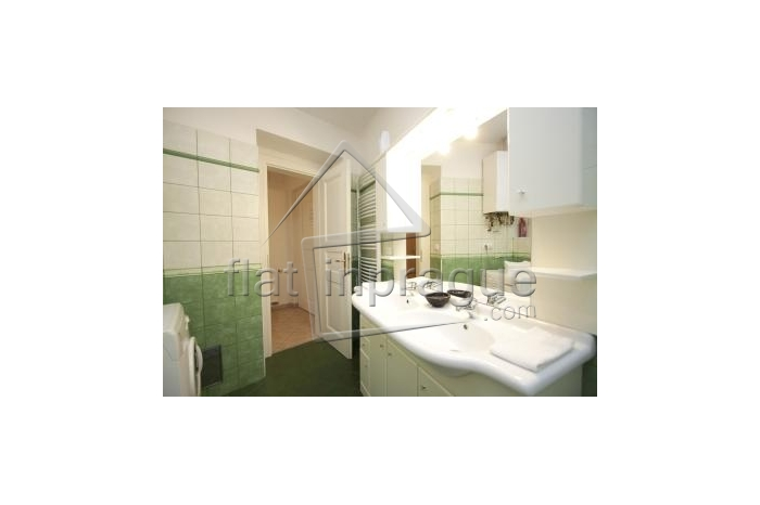 Lovely spacious two bedroomed apartment in Prague 1
