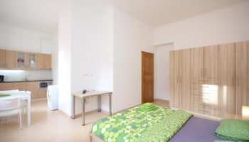 Bright and comfortable studio no.11 in Prague 2 - Vinohrady