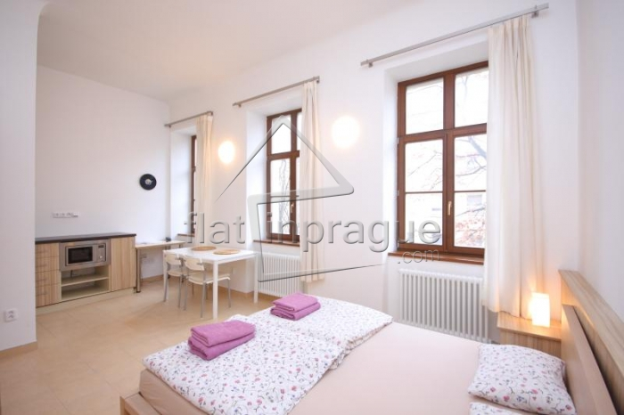 Bright and comfortable studio no.13  in Prague 2 - Vinohrady