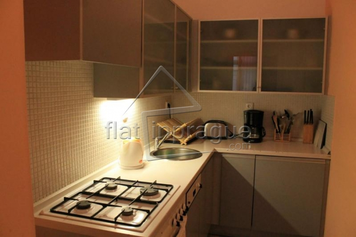 Stylish two bedroom apartment on Wenceslas Square