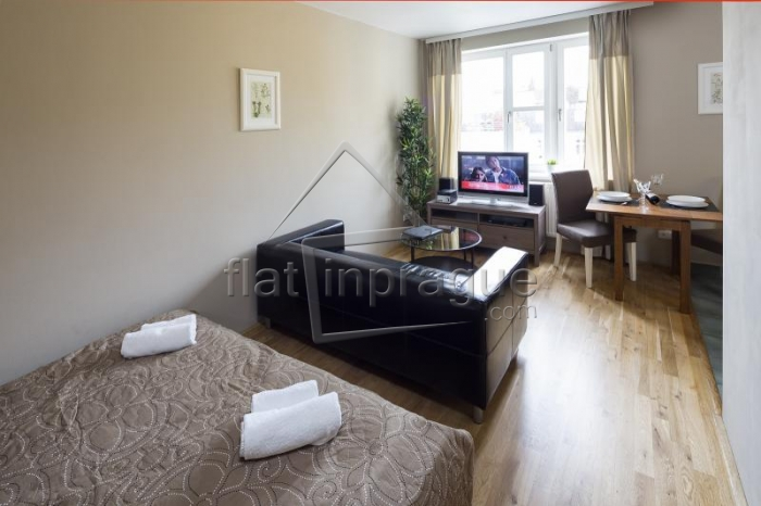Beautiful studio in the heart of Prague on Wenceslas Square