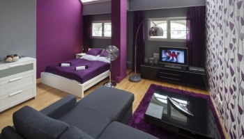 Luxury fully furnished apartment on Wenceslas Square