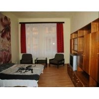 Nice one bedroom apartment suitable for up to 4 people in Prague 3 - Žižkov