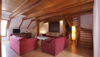 Two bedroom apartment with a view of Prague Castle