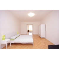 Sunny apartment nearby the Wenceslas Square