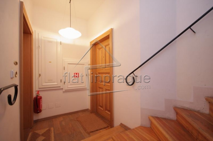 Beautiful spacious apartment below Prague Castle