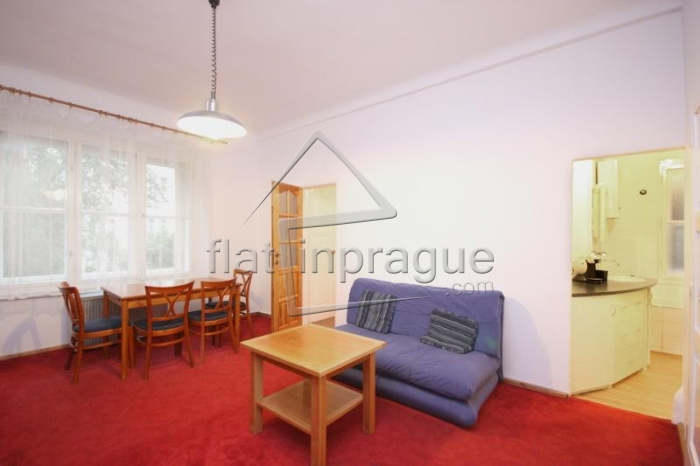 Unusual one bedroom apartment in Prague Podolí