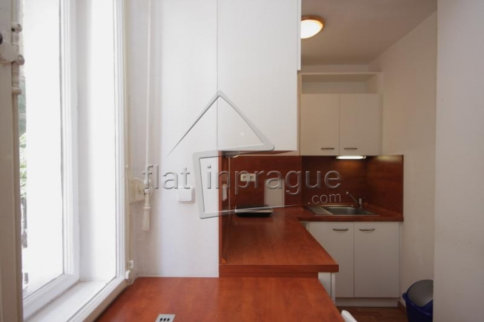 Beautiful studio with balcony in Prague 1